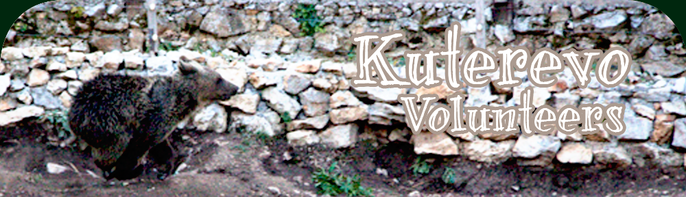 Kuterevo Volunteers' Blog