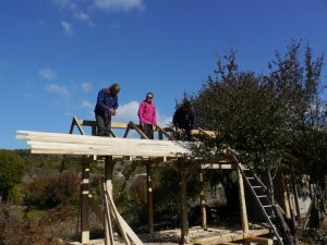 Building the new wooden house
