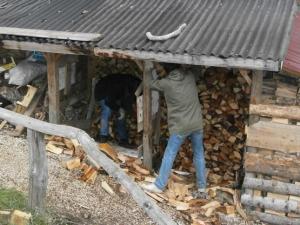 organizing woods