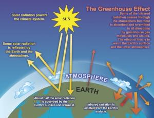 cgreenhouse effect