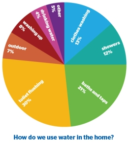 use water wisely essay Water use it wisely menu skip to content 100+ ways to conserve water 100+ tips home water audit learn how to use your water meter to check for leaks.